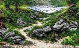 经典水草造景收藏集七
