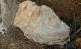 请教大神水草缸这是什么石头?