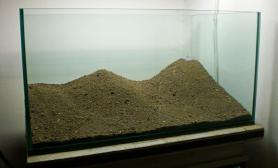 造景也是讲究黄金比例的水草缸这样的是不是符合呢