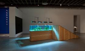 沉木青龙石造景缸与商业空间-21