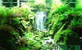 水草造景中瀑布的简单做法
