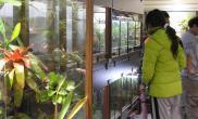 雨林缸专卖店集锦02(台湾,店名未知)