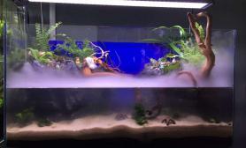 利用原配件水草缸办公室草缸转水缸