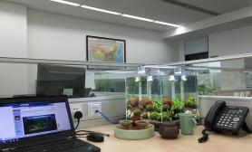 详细开缸过程分享办公室小缸水草缸定位在草缸和虾缸之间水草缸