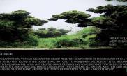 [原创]2011世界水草造景大赛20强作品巨献