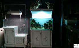 可以和家居配套的欧式水草缸见过吗?