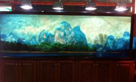 3米巨型大缸鱼缸水族箱有缺憾有亮点鱼缸水族箱高仿漓江风貌鱼缸水族箱