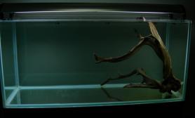 水草缸造景沉木水草泥化妆砂青龙石120CM尺寸设计22