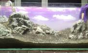 120 石景缸 陶粒