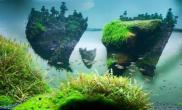 关于昨日很多人问的浮岛造景问题做出的解释鱼缸水族箱鱼缸水族箱