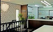 沉木青龙石造景缸与办公空间-06