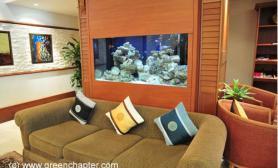 沉木青龙石造景缸与家装空间-05
