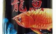 龙鱼大型鱼专用饲料(图)