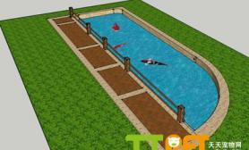锦鲤鱼池设计图图示