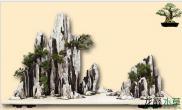 如何去挑选造景山石