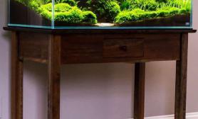 精品超白开缸全程水草缸沉木的摆放位置居然是这样?鱼缸水族箱