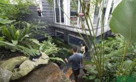 这是超级富豪玩的水草缸草缸环绕屋子一圈