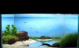 鱼缸造景这个湖水是怎样做的?