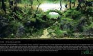 水族箱造景草缸中的赵州桥