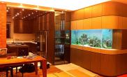 沉木青龙石造景缸与家装空间-37