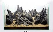 青龙石造景骨架精品收集多图收藏学习水草缸造景