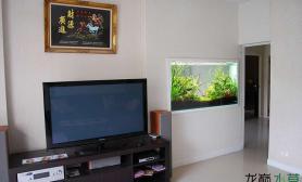 家居装饰 之 嵌入墙壁的水草缸