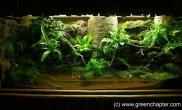 敞口水陆缸14