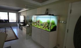 沉木青龙石造景缸与家装空间-33