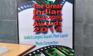 The Great Indian Aquascaping Contest 2014