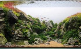 山沟沟120水草超白缸造景
