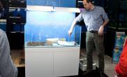 水草缸造景沉木水草泥化妆砂青龙石120CM尺寸设计73