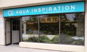 国外水族店水草缸造景aiaquainspiration