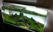 水草缸造景沉木水草泥化妆砂青龙石120CM尺寸设计95