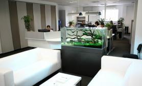 沉木青龙石造景缸与商业空间-32