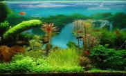 【转载】水草于背景的融合