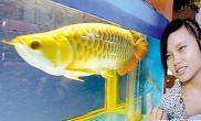 广州国际宠物水族用品展会龙鱼琶洲争霸(图)