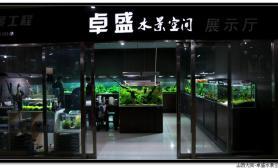 国内水族店水草缸造景山西大同尺寸设计卓盛水景空间