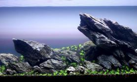 青龙石造景风向风格造景摆石教材