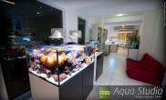 国外水族店-AquaStudio