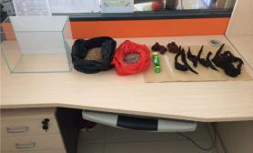 水族箱造景办公桌上的小草缸