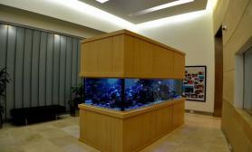 沉木青龙石造景缸与商业空间-16