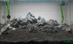 云的彼端水草缸约定的地方(青龙石造景)