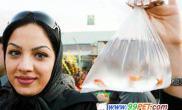 伊朗新年金鱼祈吉祥(图)