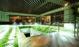 国外水族店水草缸造景RYUDUKIPrivateAquarium