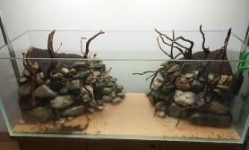 办公室1图片2米草缸建缸过程沉木杜鹃根青龙石水草泥