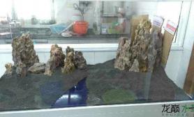 高手们水草缸石头不够了鱼缸水族箱帮我看看这样摆可以吗?