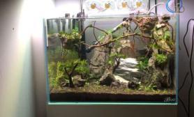 2次阿凡达悬浮山造景鱼缸水族箱