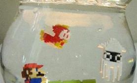 闯关了鱼缸里的超级玛丽(多图)