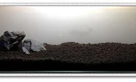 水草造景60厘米迷你草原缸