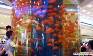 弧度越大越危险美丽鱼缸暗藏安全隐患(图)